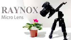 Raynox多款近攝鏡放大效果比較表