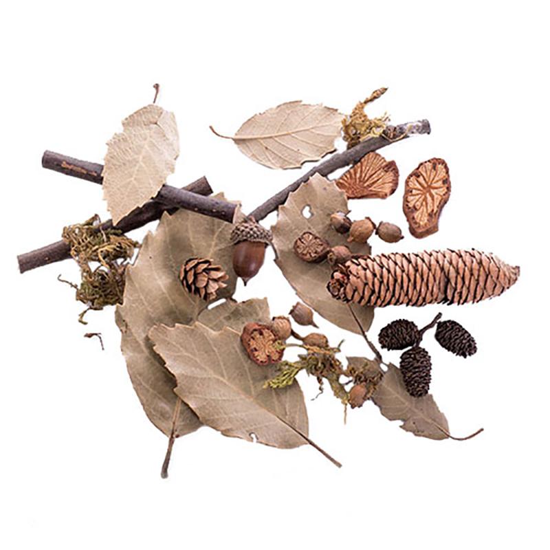 KEYSTONE 自然森林9件套拍攝道具
