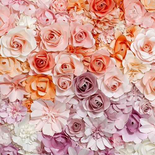 KEYSTONE 絨面背景布-花朵150*200CM